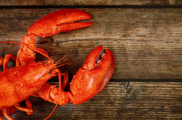 festival du homard saint-germain